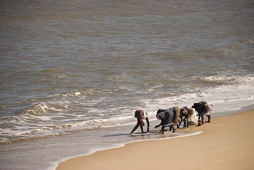 sofala-fotos-mocambique-8