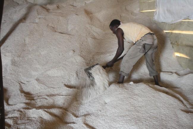 Na fábrica de produção de sal