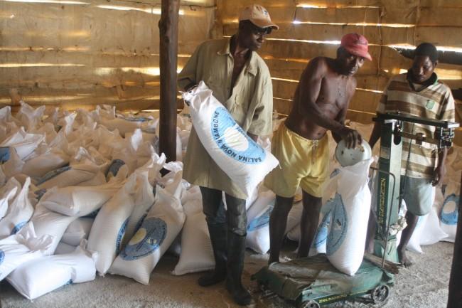 Homens empacotando o sal