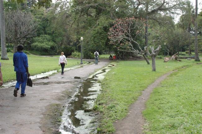 Jardim Tunduro