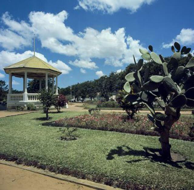 Jardim em João Belo (Xai-Xai)
