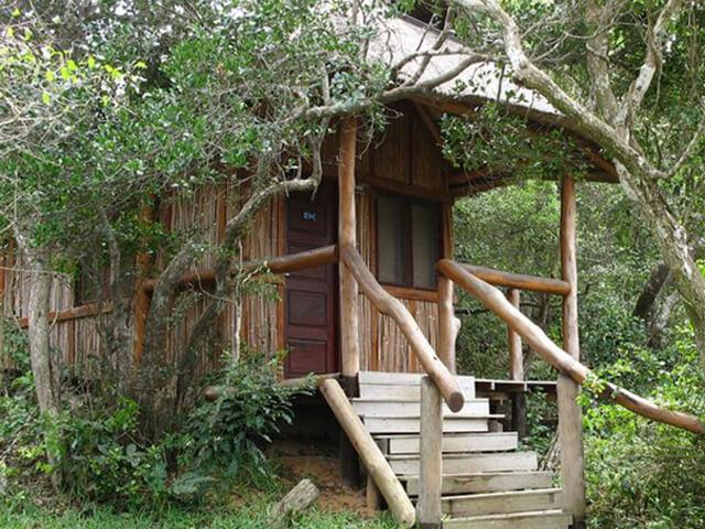 Zona Braza Lodge