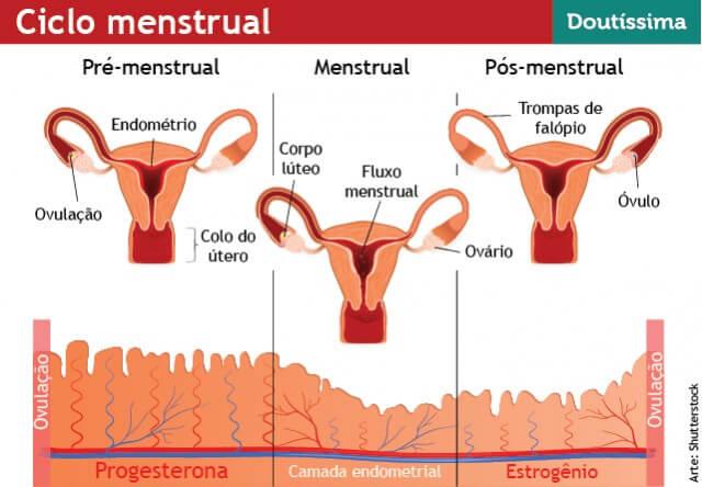 Descarga vaginal antes del ciclo menstrual